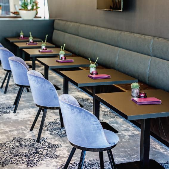 Muebles de Freifrau sillas de restaurante ahora en México